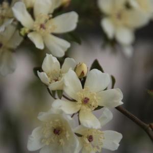 今春の振返り。ヽ(^o^)丿