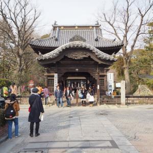 足利氏館 城なのかわからないが日本100名城