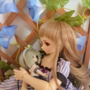 天使と蜻蛉のウインドウ(向日葵咲き乱れ)