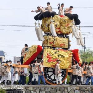 朔日市みこし 御殿前 伊曽乃神社祭礼 西条祭り2018 愛媛県西条市