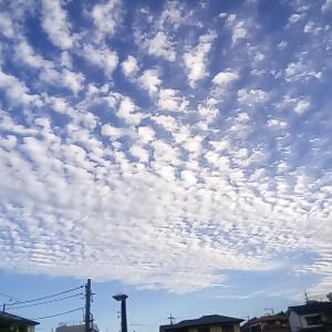 11月1日の朝の空