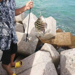 石垣島で手軽に釣りを楽しみたいならテトラを狙え❓