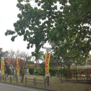 石垣マラソン2020