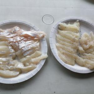 釣れたメイチダイとサザナミダイを刺身で食べる~