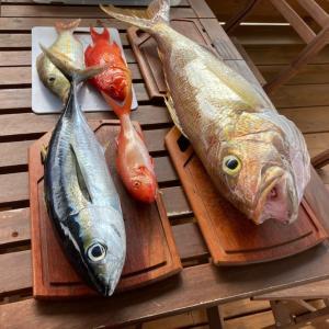 石垣島 ぱいぬしまリゾートホテルに戻って釣った魚でBBQ〜