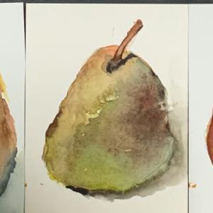水彩紙比べ 洋梨を描く