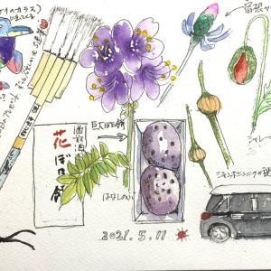 メモリーイラスト46とアクリルで描いたバラ