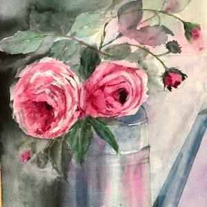 薔薇、シャポー ド ナポレオン