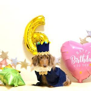 6th Happy Birthday ❤️