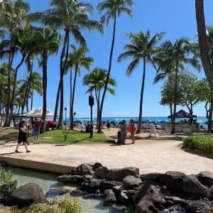 【旅行記】4歳子連れ3世代ハワイ旅行へいってきました〜計画段階&費用公開編〜
