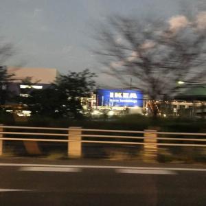 【長久手IKEA】10月11日オープン!長久手IKEAのプレオープンに行ってきました!~戦利品ご紹介~