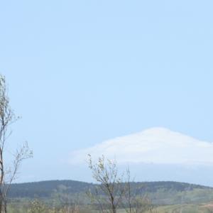 雲に覆われ利尻富士