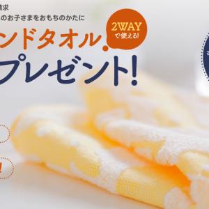 今治ハンドタオルを、無料0円で手に入れる(タダでもらう)方法
