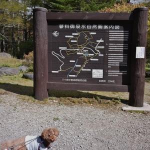 シュートと秋の信州へ♪ @ 御泉水自然公園