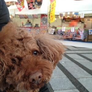 駒沢公園で、からあげ!?