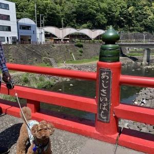 シュートと箱根へ♪ 箱根湯本で食べ歩き