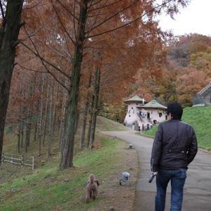 シュートとムーミン谷へ @ トーベ・ヤンソンあけぼの子どもの森公園(飯能)