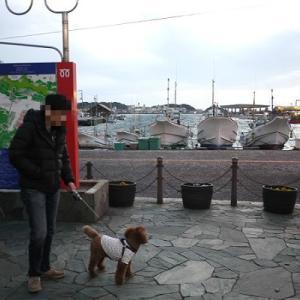 シュートと三崎漁港でマグロ♪ @ 有魚亭