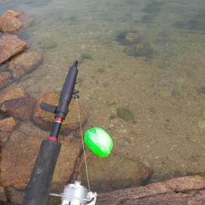 初心者が一気に釣果を上げる方法
