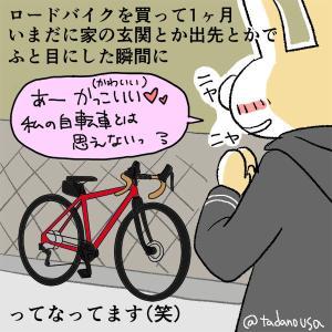 [日記]ロードバイク購入から一ヶ月