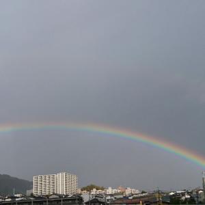 学校守衛物語―78 《綺麗な虹》