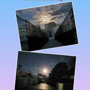 学校守衛物語ー147 《幻想的な満月ビーバームーン》