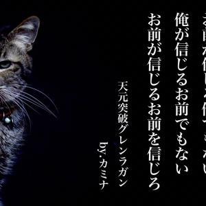 【ホームページ制作】香川と岐阜でテレワーク【コロナなんかに負けてられっか!】
