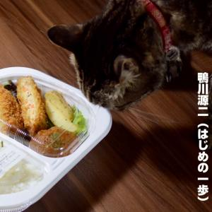 肉DeLi高松ふじむら精肉店のお弁当をテイクアウト🤤