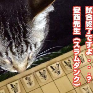 ブログ記事の書き方!1記事57000PVは猫でも書ける