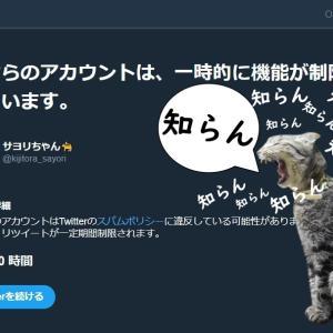 #猫の写真に知らんて入れたら世界が平和になるからやってみて大会