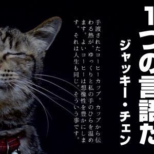 コーヒーのお届けもの 珈琲と古道具〜Remza〜