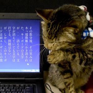 【TOSHIBA B551】中古ノートPCを1か月使用した感想をアゲアゲで書いてみた