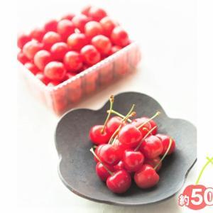 【秋田県 横手市】生産量トップの秋田県からお届け!数量限定&これからが旬のフルーツはいかが?