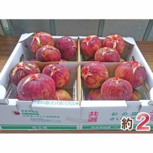 【埼玉県 行田市】数量限定★不老長寿の果物?!栄養価が高い、旬の「あの果物」はいかがですか??
