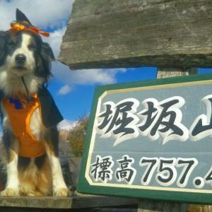 10/24 松阪市 ハロウィン登山イン..