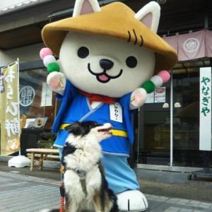 7/13 松阪市 堀坂山清掃登山と松..