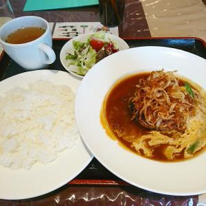 新宿 大衆食堂 はやしやさんでハンバーグ