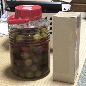 ☆マイブーム(50):ウイスキー梅酒に自作の箱!