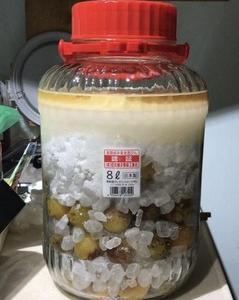☆2021年 梅酒づくり(6):やっと今年の梅シロップを漬けたぜ!