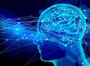 ☆『アルツハイマー病 真実と終焉』を解説(5):脳は何からできてるの?