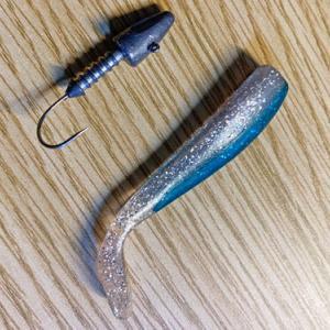 シーバスは釣れなかったけど嬉しい魚が釣れた!