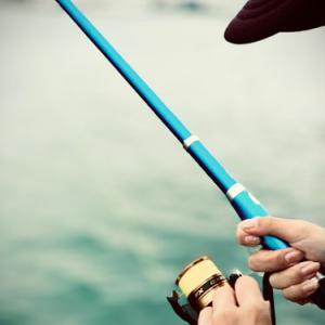 ルアーでは釣れないがサビキでは釣れた