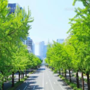 孫❤️新緑を楽しみながらポケモンGOドライブ
