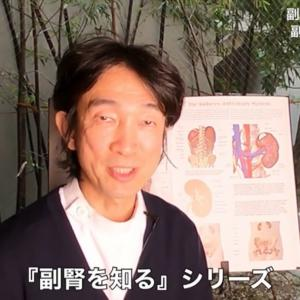 YouTube動画⭐️❤️副腎と免疫疾患の意外な関係