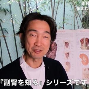YouTube動画⭐️❤️「副腎を知る第2回」産まれ持って副腎が弱い人