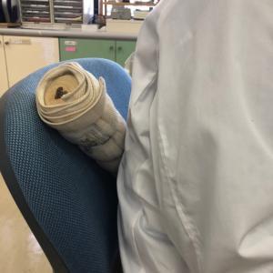 記録❤️川本治療所名古屋出張治療と膠原病内科定期受診