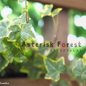 街中で味わう、森のオアシス♡…Cafe Asterisk Forest(宇都宮市)