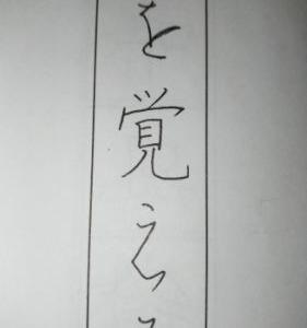 7月・「貴婦人」・パイロットペン習字