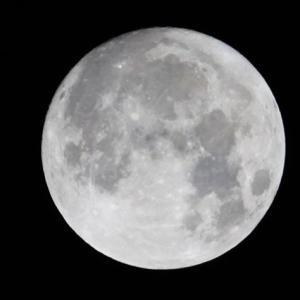 中秋の名月・十五夜お月様