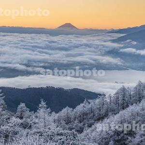 霧氷の高ボッチ高原
